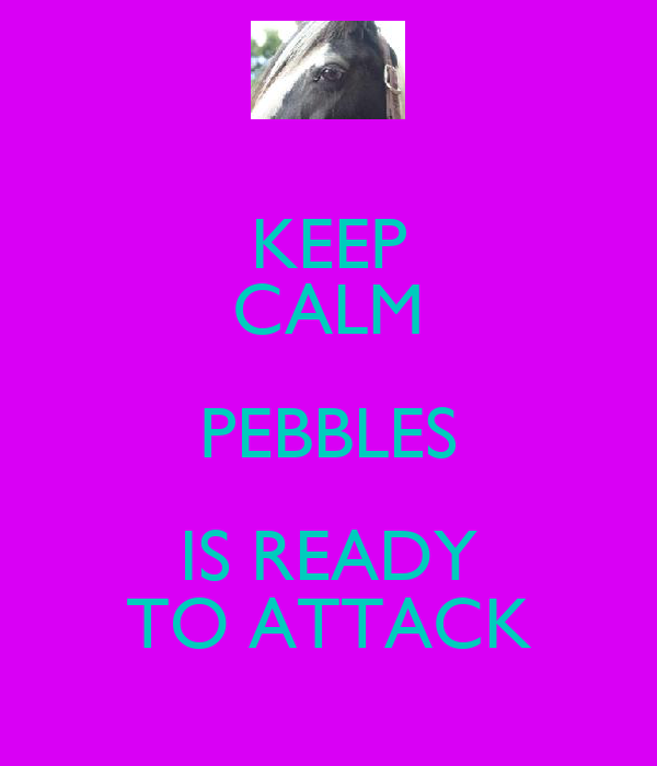 KEEP CALM PEBBLES IS READY TO ATTACK