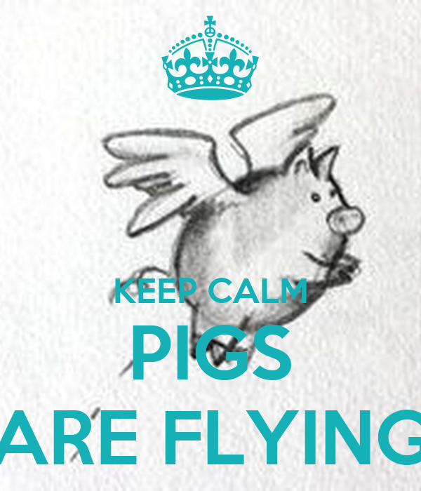 KEEP CALM PIGS ARE FLYING