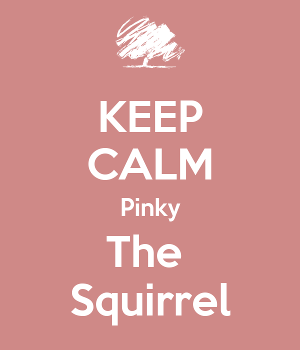 KEEP CALM Pinky The  Squirrel