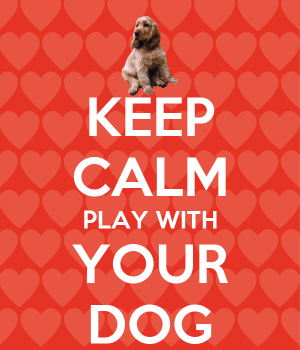 KEEP CALM PLAY WITH YOUR DOG