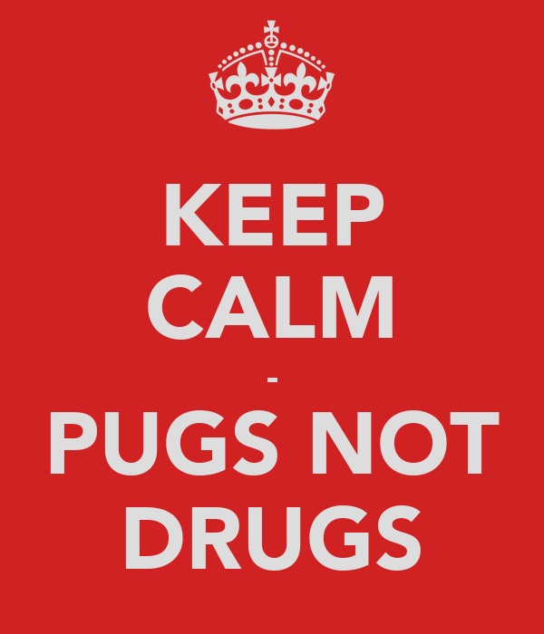 KEEP CALM - PUGS NOT DRUGS