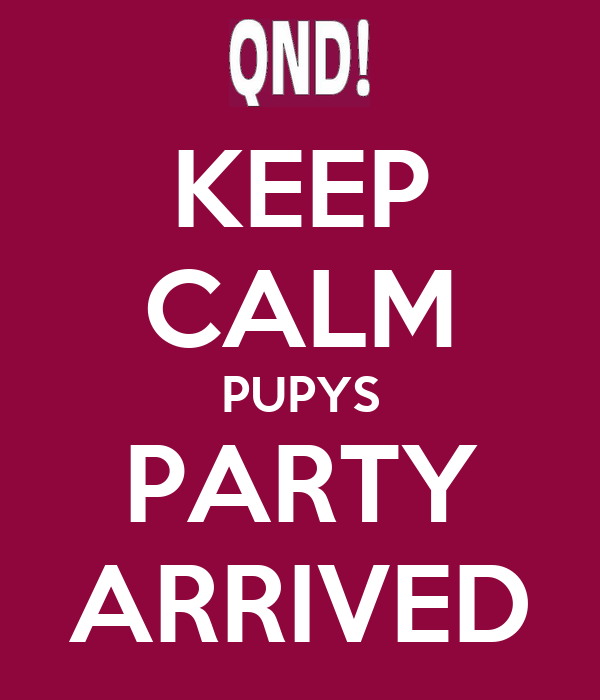KEEP CALM PUPYS PARTY ARRIVED