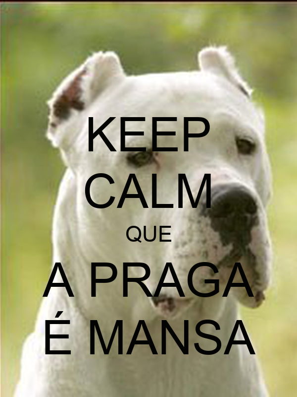 KEEP CALM QUE A PRAGA É MANSA