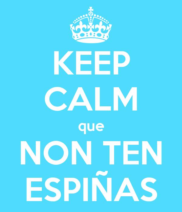 KEEP CALM que NON TEN ESPIÑAS