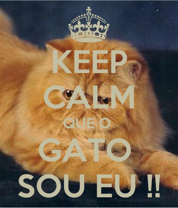KEEP CALM QUE O  GATO  SOU EU !!