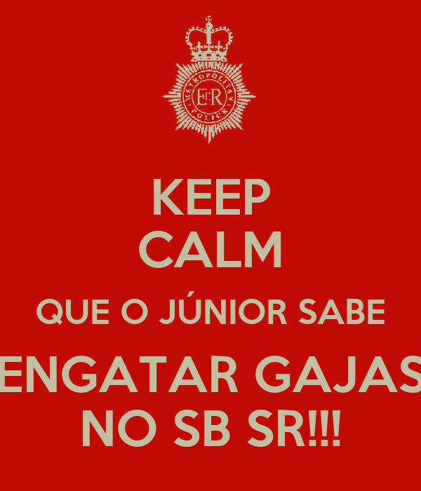 KEEP CALM QUE O JÚNIOR SABE ENGATAR GAJAS NO SB SR!!!