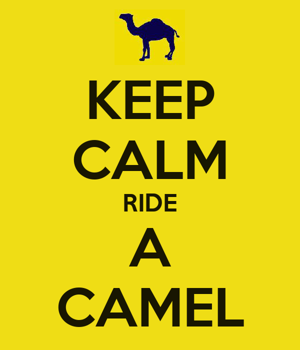 KEEP CALM RIDE A CAMEL