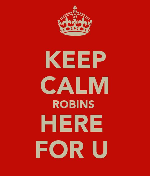KEEP CALM ROBINS  HERE  FOR U