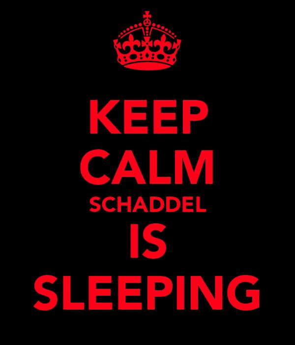 KEEP CALM SCHADDEL IS SLEEPING