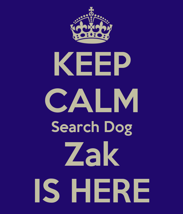 KEEP CALM Search Dog Zak IS HERE