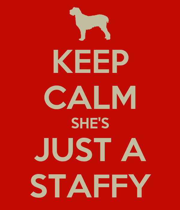 KEEP CALM SHE'S JUST A STAFFY