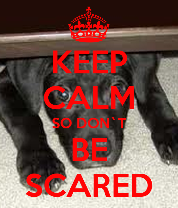 KEEP CALM SO DON`T BE SCARED