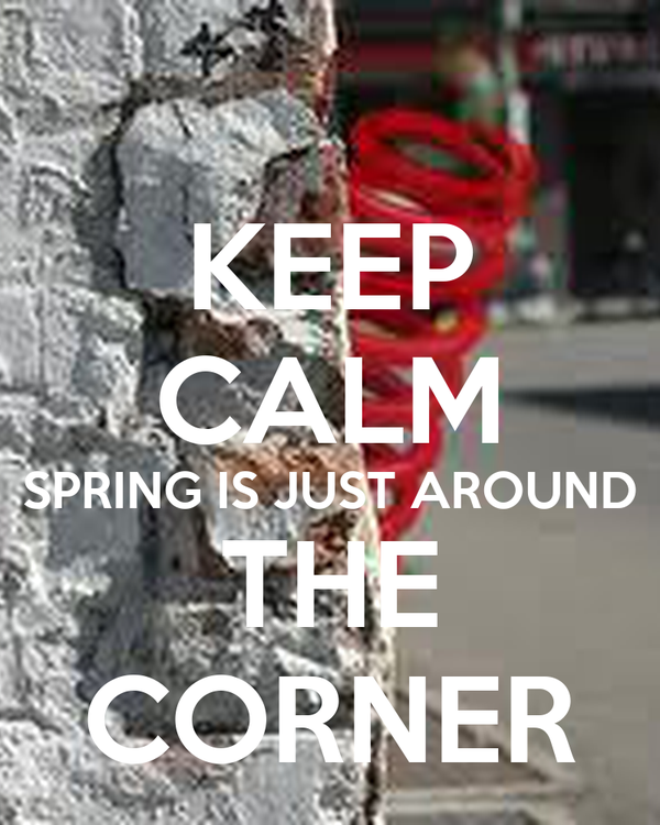 Image result for spring is just around the corner