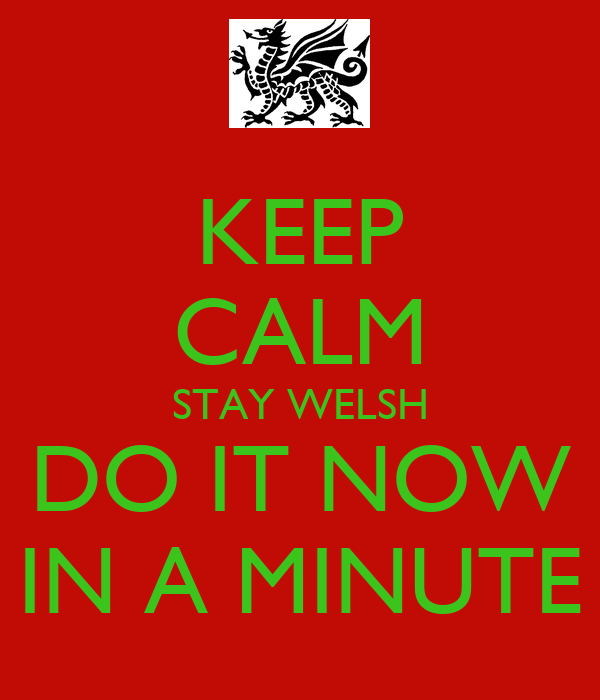 KEEP CALM STAY WELSH DO IT NOW IN A MINUTE