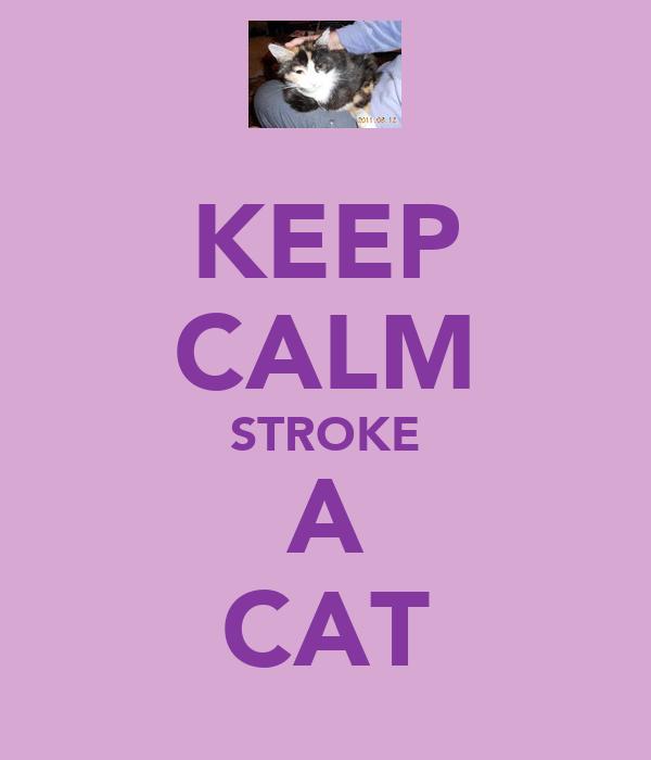 KEEP CALM STROKE A CAT