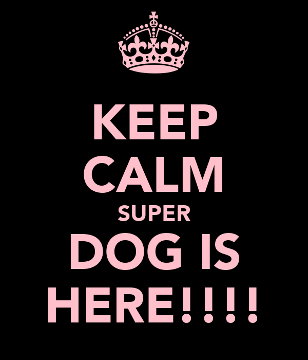 KEEP CALM SUPER DOG IS HERE!!!!