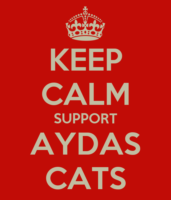 KEEP CALM SUPPORT AYDAS CATS