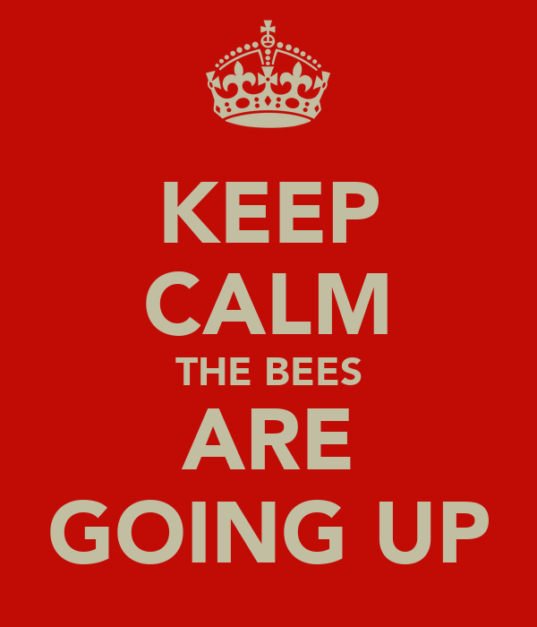 KEEP CALM THE BEES ARE GOING UP