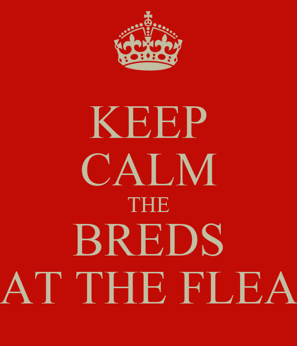 KEEP CALM THE BREDS AT THE FLEA