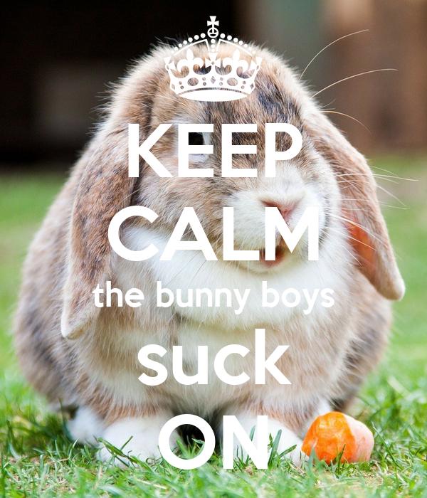 KEEP CALM the bunny boys suck ON