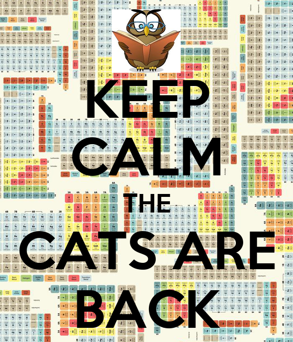 KEEP CALM THE CATS ARE BACK