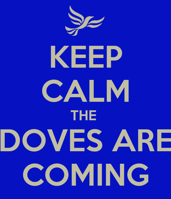 KEEP CALM THE  DOVES ARE COMING