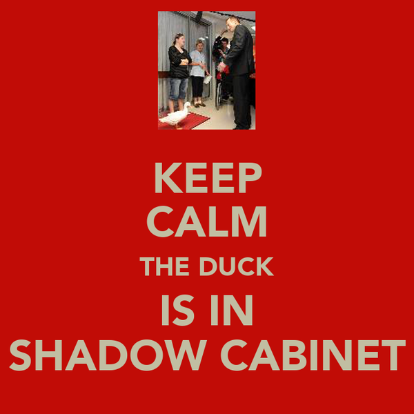 KEEP CALM THE DUCK IS IN SHADOW CABINET