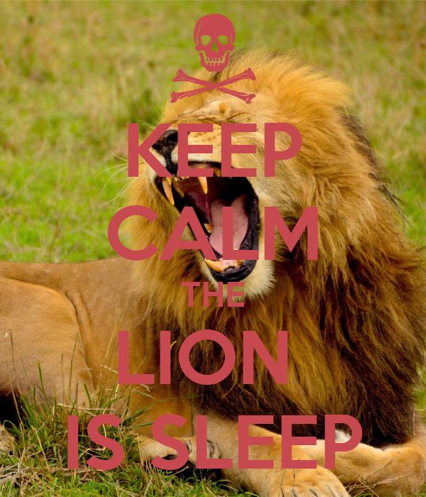 KEEP CALM THE LION  IS SLEEP