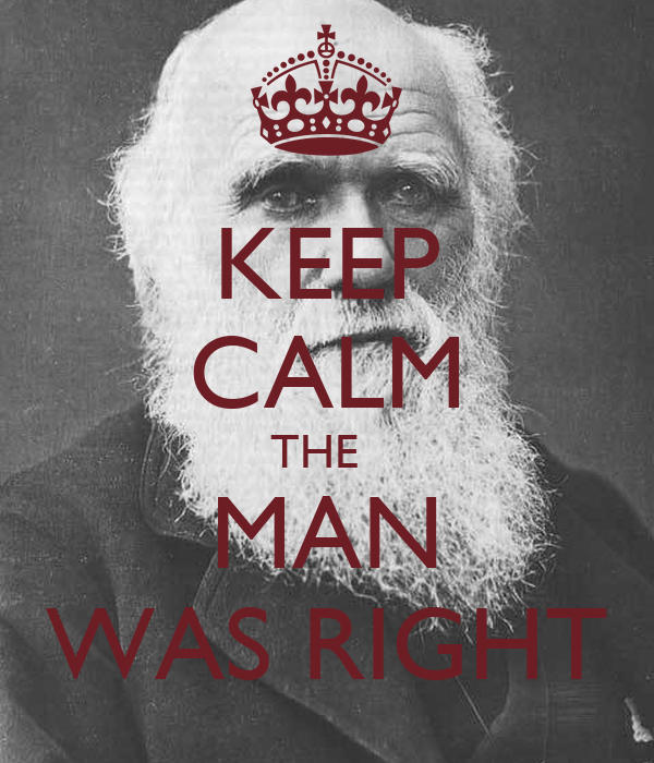 KEEP CALM THE   MAN WAS RIGHT