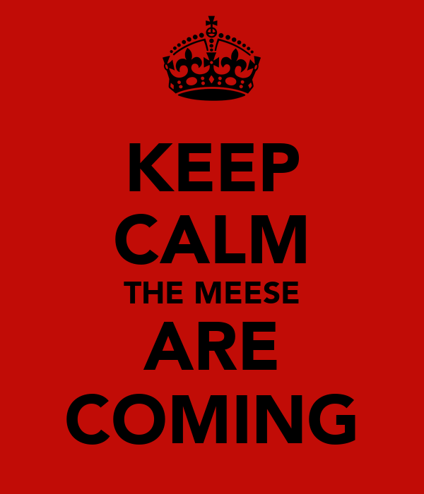 KEEP CALM THE MEESE ARE COMING