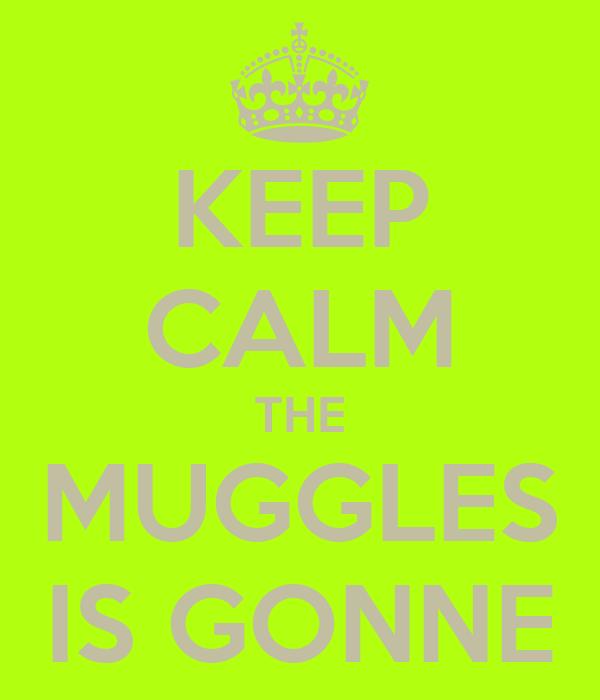 KEEP CALM THE MUGGLES IS GONNE