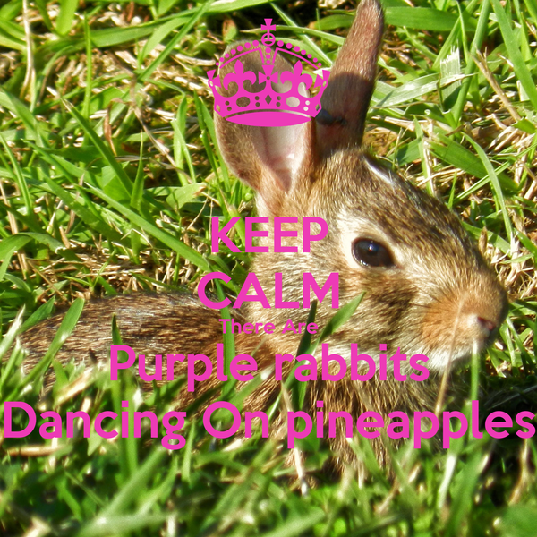 KEEP CALM There Are Purple rabbits Dancing On pineapples