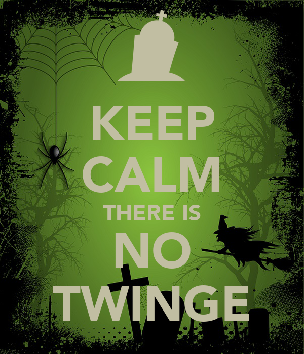 KEEP CALM THERE IS NO TWINGE