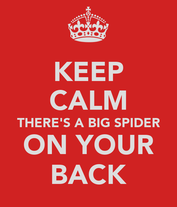 KEEP CALM THERE'S A BIG SPIDER ON YOUR BACK