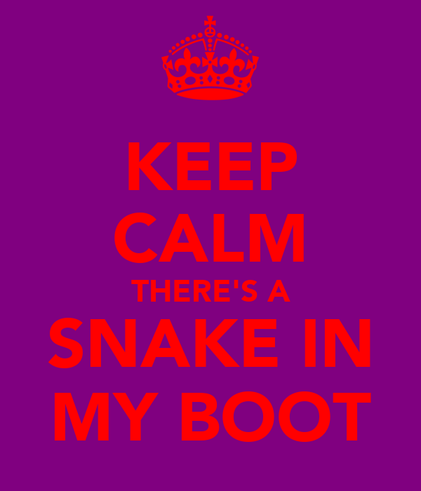 KEEP CALM THERE'S A SNAKE IN MY BOOT