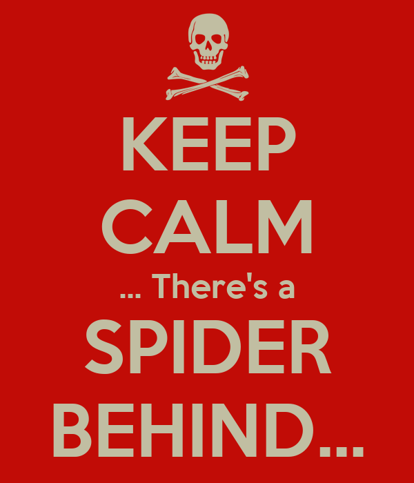KEEP CALM ... There's a SPIDER BEHIND...
