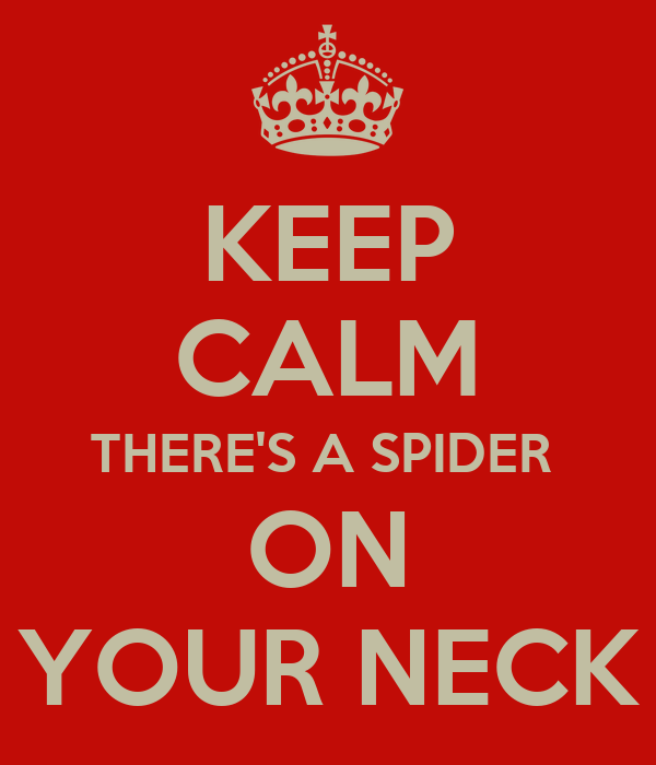 KEEP CALM THERE'S A SPIDER  ON YOUR NECK