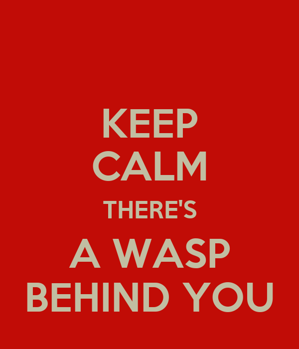 KEEP CALM THERE'S A WASP BEHIND YOU