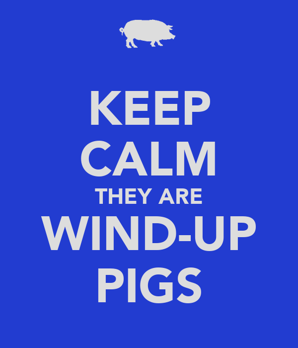KEEP CALM THEY ARE WIND-UP PIGS