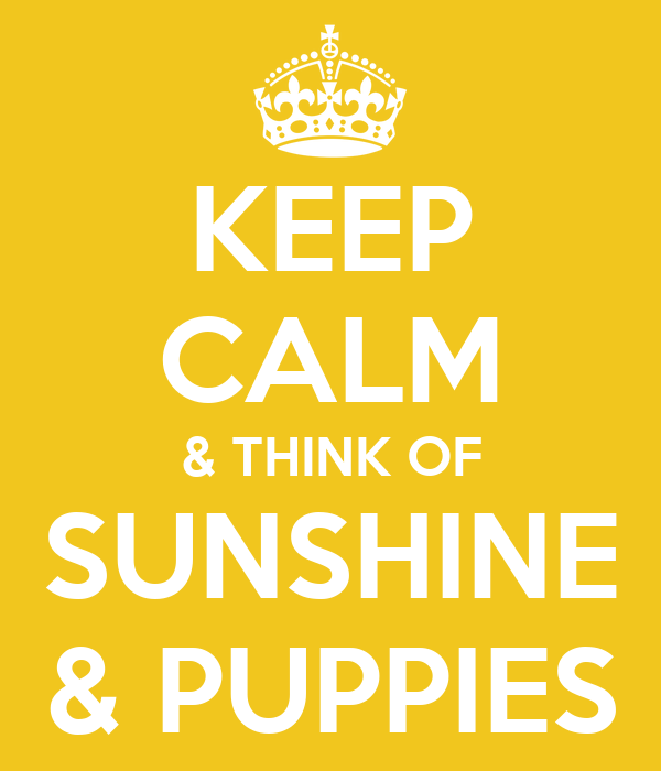 KEEP CALM & THINK OF SUNSHINE & PUPPIES