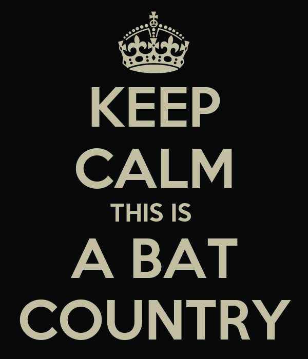 KEEP CALM THIS IS  A BAT COUNTRY