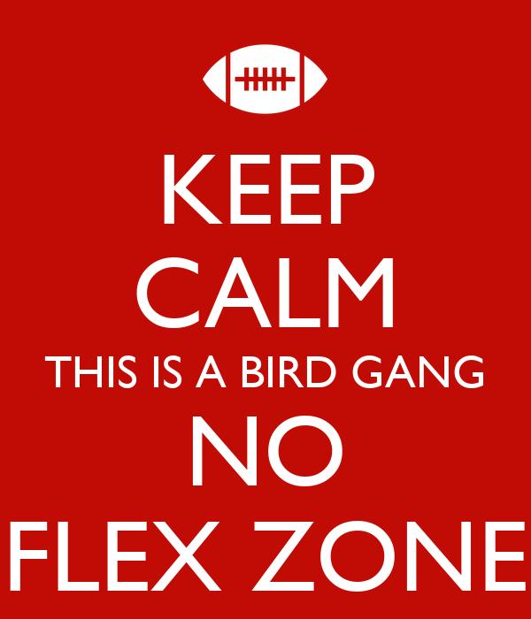 KEEP CALM THIS IS A BIRD GANG NO FLEX ZONE