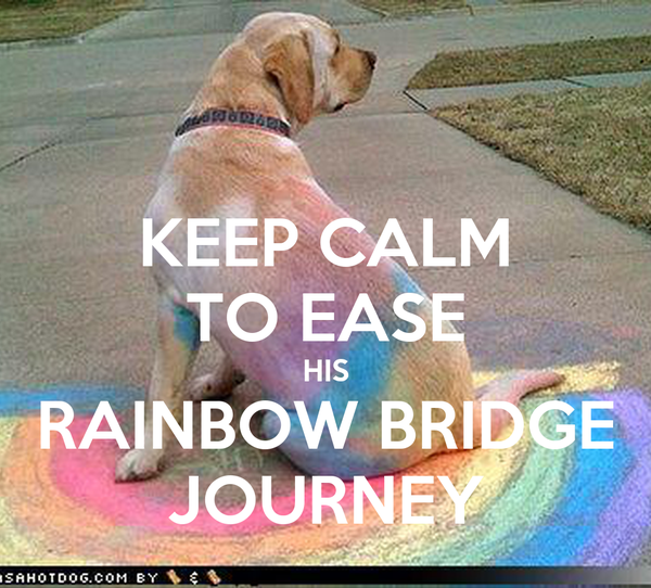 KEEP CALM TO EASE HIS RAINBOW BRIDGE JOURNEY