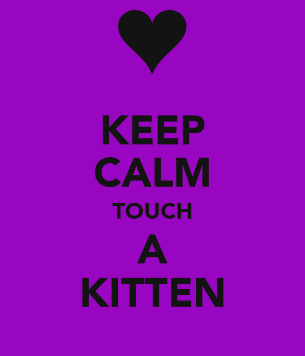 KEEP CALM TOUCH A KITTEN