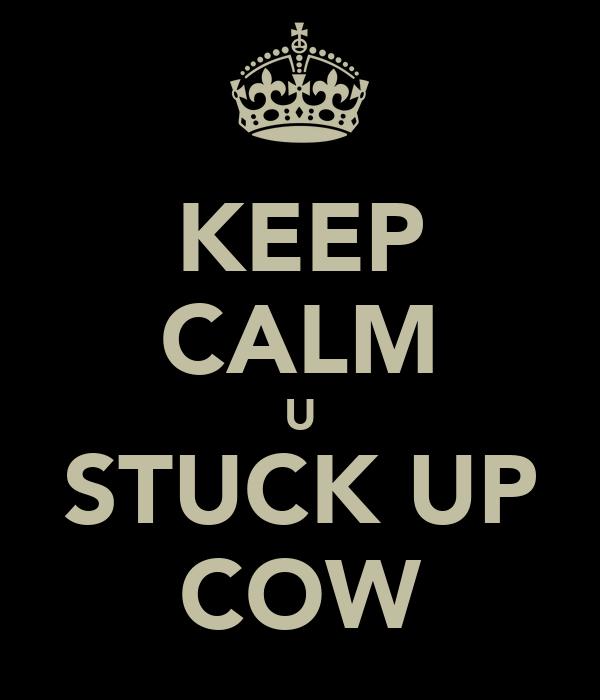 KEEP CALM U STUCK UP COW