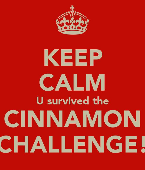 KEEP CALM U survived the CINNAMON CHALLENGE!