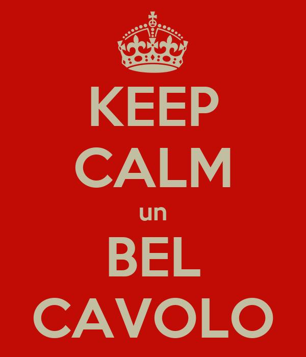 KEEP CALM un BEL CAVOLO