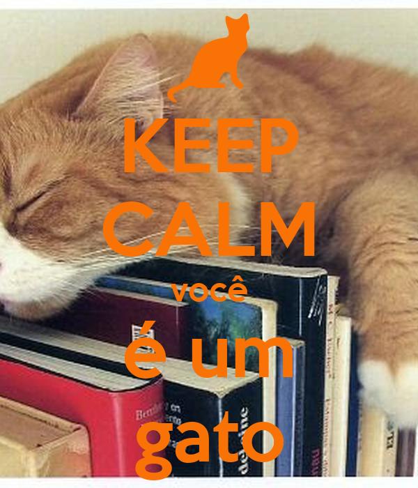 KEEP CALM você é um gato