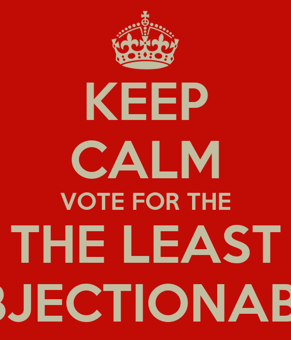 KEEP CALM VOTE FOR THE THE LEAST OBJECTIONABLE