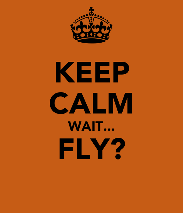 KEEP CALM WAIT... FLY?